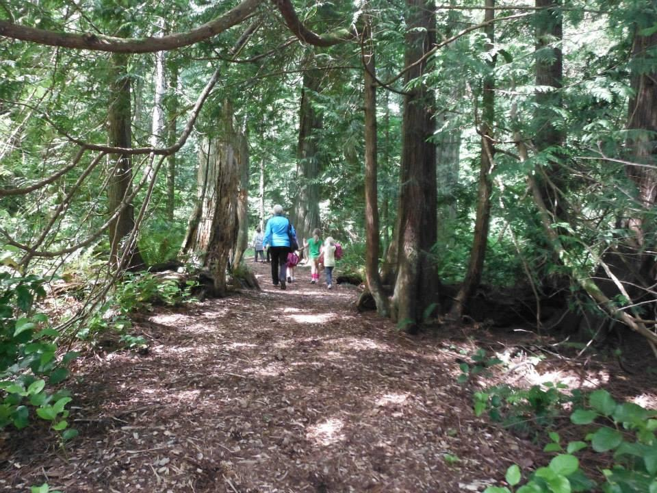 group on a forested trail